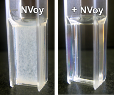NVoy polymers improve protein solubility