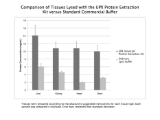 Comparison of protein yield between different extraction methods
