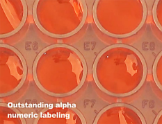 Never get lost under the microscope: alphanumeric labels between the wells