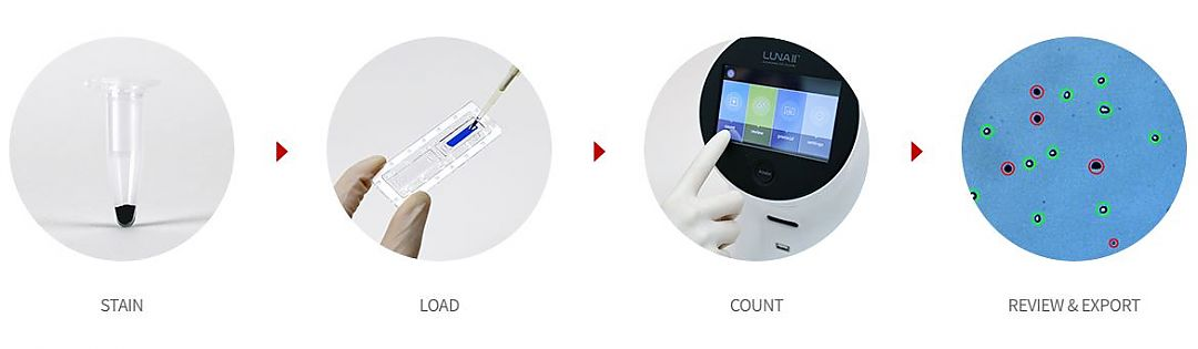 Easy and accurate cell counting with LUNA-II